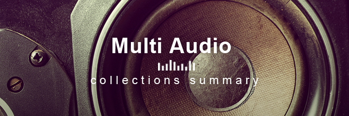 Multi Audio