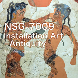 NSG-7009  Installation Art -Antiquity