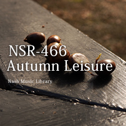 NSR-466 Autumn Leisure
