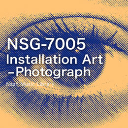 NSG-7005  Installation Art -Photograph