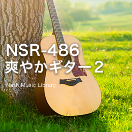NSR-487 Refreshing Guitar 2