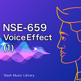 NSE-659 Voice Effect (1)