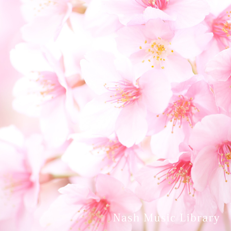 Spring Soundtracks for Cherry Blossoms