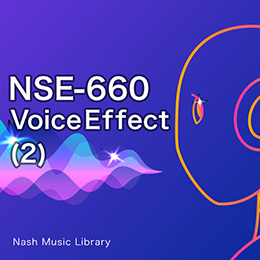 NSE-660 Voice Effect (2)