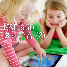 NSE-650 Touch Sounds (2)