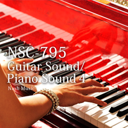 NSC-795 Guitar Sound/Piano Sound